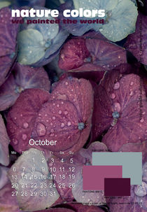 nature colors calendar february 2014 by ggoulias