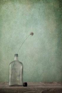just an old bottle and its cap/nur eine alte Flasche und ihr Deckel by Priska  Wettstein