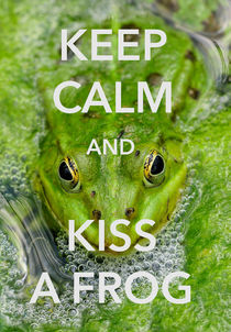 Keep calm and kiss a frog funny quote by Matthias Hauser