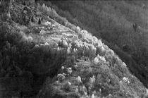 Valle Onsernone von David Halperin