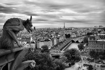 Notre Dame gargoyle overlooking Paris, France by aelita