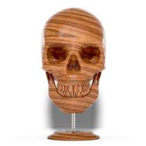 Skull-wood-s6-square