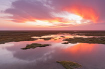 Sunset-salzwiesen-2
