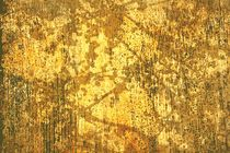 Branches and Sunlight In Gold von suzanne powers
