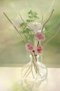 Verträumtes Rosen Stillleben in Pastell von Tanja Riedel