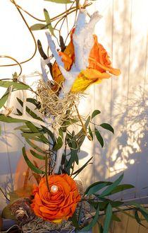 Outdoor Ikebana von Juergen Seidt