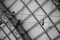 Vier Tauben untem Blechdach  by Bastian  Kienitz