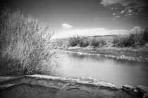 Rio Grande Hot Springs in Black and White by Judy Hall-Folde