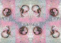 Pattern-ringe-0053-af-6mb-1980