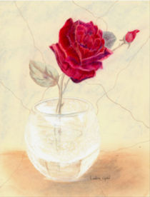 Red-rose-in-vase
