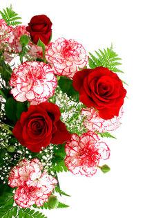 Blumenstrauss - flower bouquet  von monarch