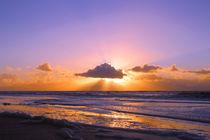 beach sunset by steflei