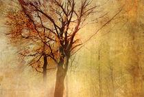 'Autumn' von Vera Kämpfe