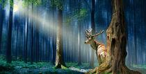 Der Hirsch im mystischen Wald von Monika Juengling
