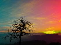 Sonnenuntergang mit kräftigen Farben | Landschaftsfotografie by Patrick Jobst