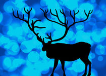Oh Deer! BOKEH!!! by Denis Marsili