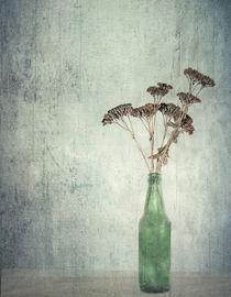 bottled by Vera Kämpfe