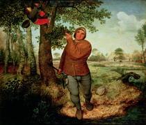 Bauer und Vogelnester von Pieter Brueghel the Elder