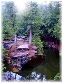 P-fopd001-forest-pond-1-copy