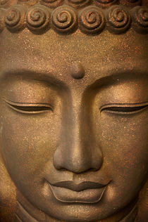 Meditating Buddha von John Mitchell