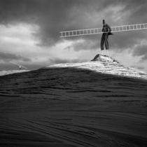 The Ladders by Dariusz Klimczak