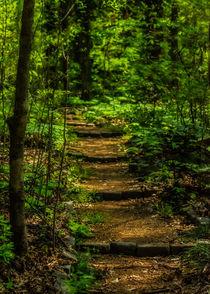 Memphis-botanic-garden-039raw5x7-l-and-e