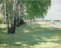 The Garden of the Artist in Wannsee by Max Liebermann