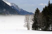 winterlich by Jens Berger