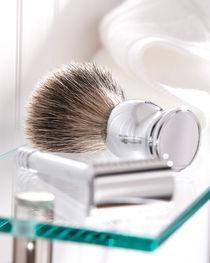 Shaving by Daniel Troy