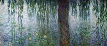 Seerosen mit Trauerweiden, Detail links von Claude Monet