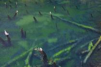 Arco Iris lagoon von Víctor Suárez