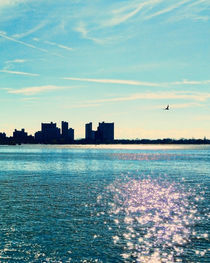 Coney-island-and-new-york-aquarium-009-denoise2-fill-nowm
