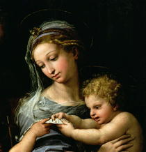 The Virgin of the Rose by Raffaello Sanzio of Urbino