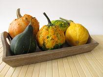 Herbstliche Dekoration mit Zierkürbissen von Heike Rau