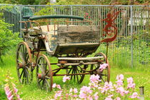 Vintage horse carriage in a flower bed  by amineah