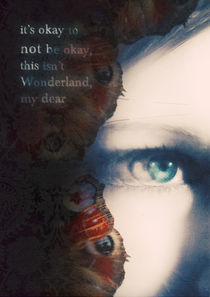 this is not wonderland von Sybille Sterk