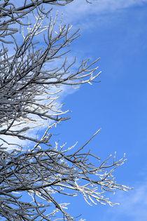 schneebedeckt by Jens Berger