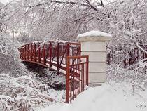 Snow-way-or-no-way