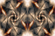 Swirl-brown-texture