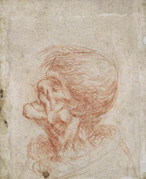 Caricature Head Study of an Old Man by Leonardo Da Vinci