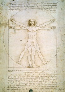 The Proportions of the human figure (after Vitruvius) by Leonardo Da Vinci