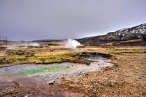 Geothermal Landscape  von Rob Hawkins