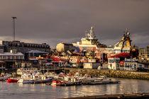 Reykjavik Harbour  by Rob Hawkins