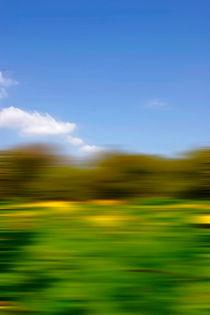 Motion-blur-foreground
