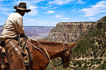 Cowboy on the Trail at Grand Canyon National Park by Jim Plaxco
