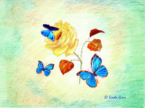 Morph-butterflies-on-yellow-rose