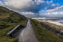 Path to Morte Point by Dave Wilkinson