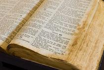 holy bible von hansenn