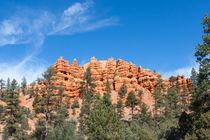 Pillars And Ridges At Red Canyon by John Bailey