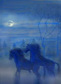 Nebel-Pferde by Heidi Schmitt-Lermann